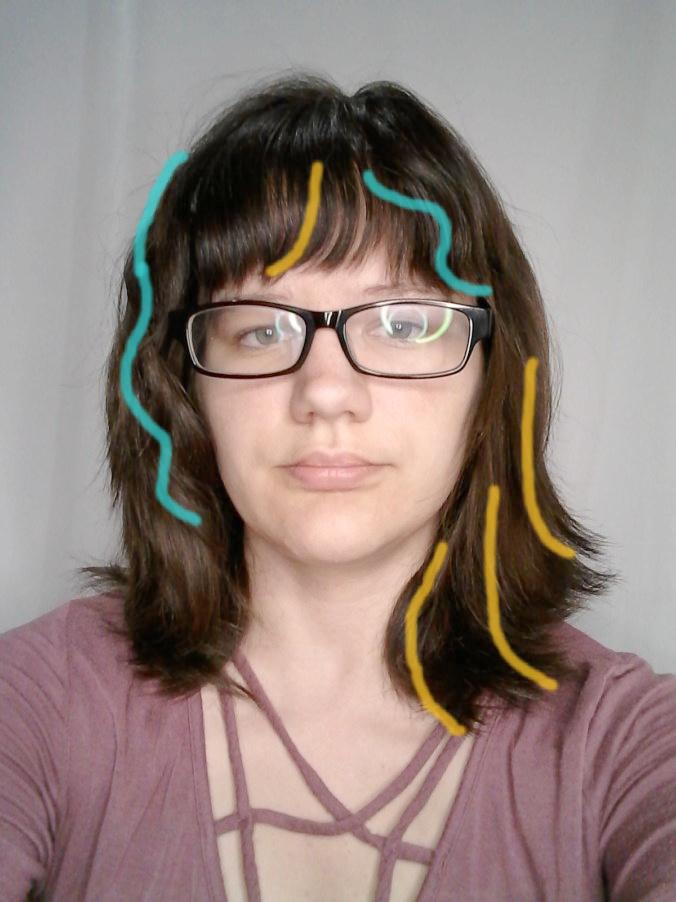 1c vs 2a hair curl pattern